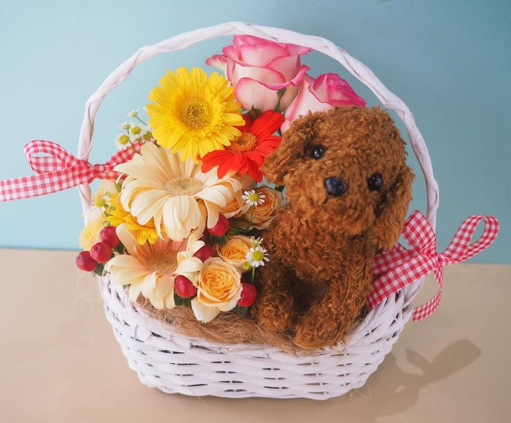 花 贈る,花 宅配,誕生日 花,フラワーアレンジメント,お祝い,お供え お悔やみ